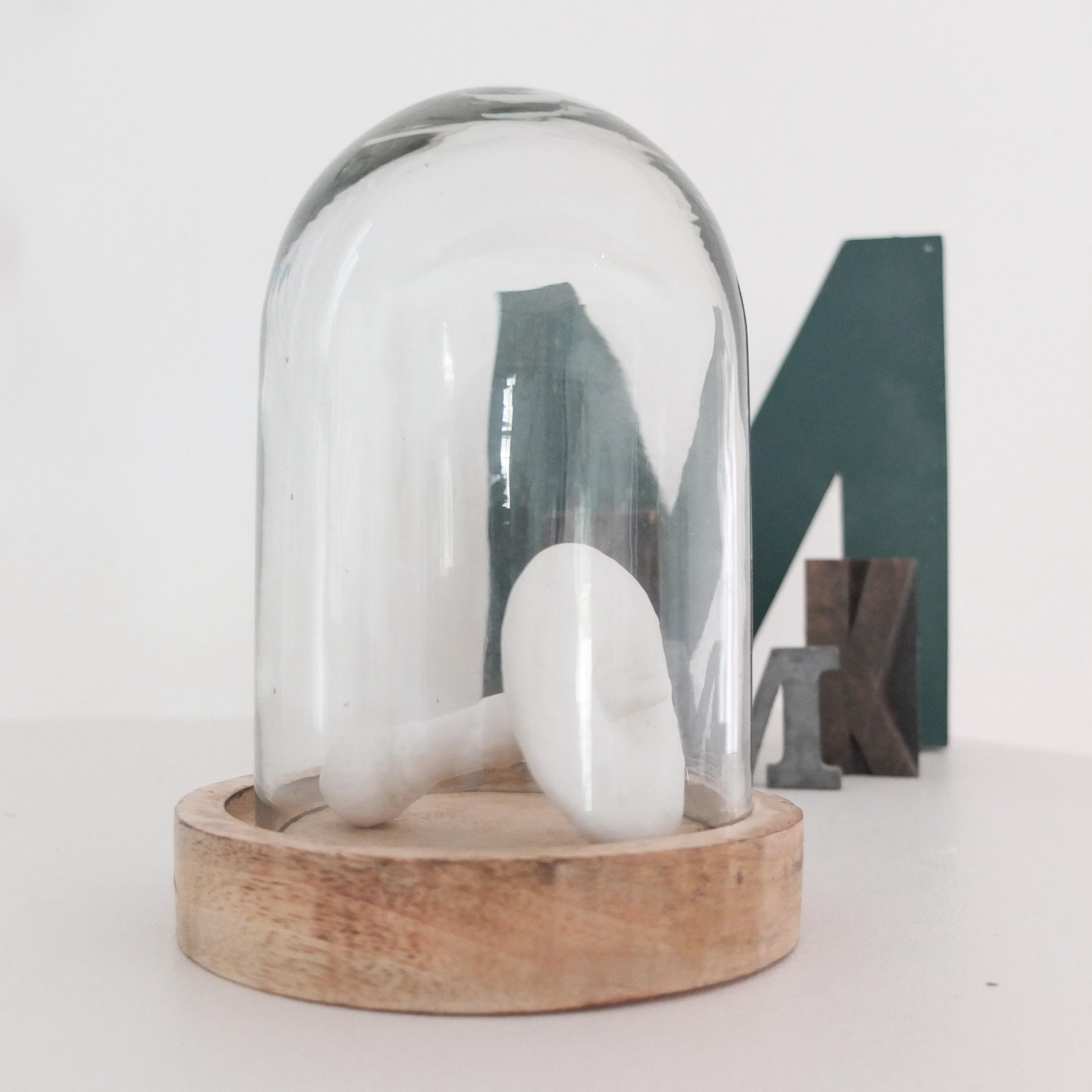 globe en verre et socle en bois vintage magic. Black Bedroom Furniture Sets. Home Design Ideas